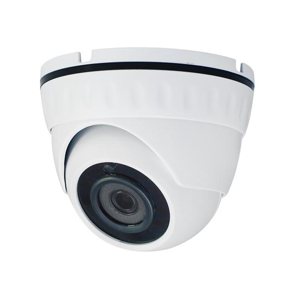 Камера видеонаблюдения Антивандальные AltCam, DDMF41IR